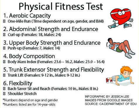 Fit freshmen can qualify for P.E. exemption - The Bruin Voice