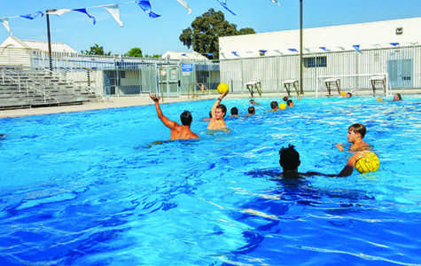 Water polo demands painful physical challenges