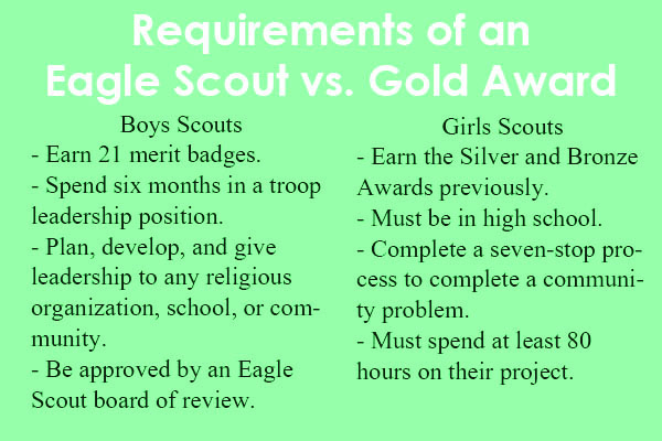 Boy Scouts will open to girls in 2020